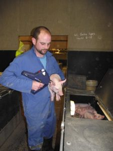 Craig Brown, farrowing house and assistant unit manager is enjoying a career in pig production